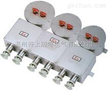 B(MD)X52防爆照明(动力)配电箱(不锈钢外壳)