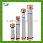 户内高压限流熔断器RN1-6Kv/0.5-25A陶瓷熔断管