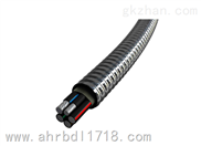 YJLHV62(ACWU90)-铠装铝合金电力电缆