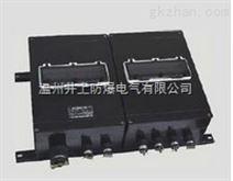 FXMD-S防水防尘防腐照明配电箱