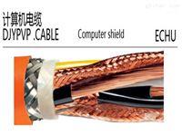 DJYVP22  2*2*1.0双绞屏蔽计算机铠装电缆