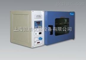 热空气消毒箱/干热灭菌烘箱