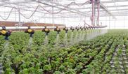 hg-蔬菜大棚控制视频监控系统