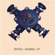 BHD2-40-4T-BHD2-40-4T矿用隔爆型低压电缆接线盒