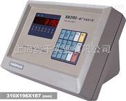 上海彩信电子仪表生产厂商