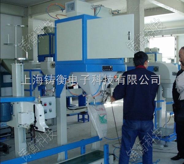 多功能塑料粒子包装机