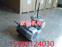 加长轴电机/烘箱长轴电机/恒温箱长轴电机/耐高温长轴电机