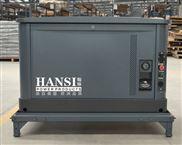 HS10REG-10千瓦汽油发电机组