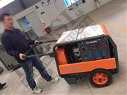 DA10000-10KW汽油发电机组原装德国