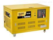 12千瓦小型汽油发电机/多燃料汽油发电机