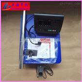 贵州200kg计重电子台称 立杆式电子秤