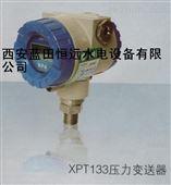 蜗壳进口压力表XPT133智能压力变送器现货