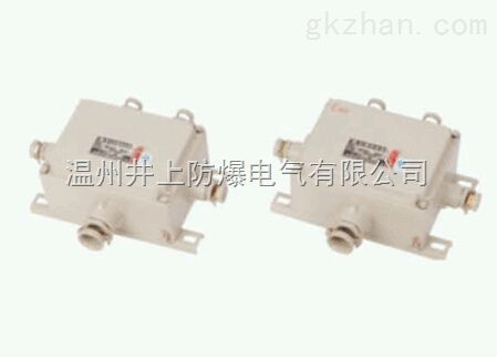 BJX-10/20AD4X4G3/4防爆接线箱(新黎明铸铝防爆非标接线箱定做)