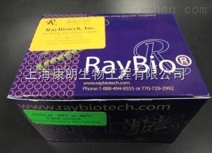 白介素试剂盒说明书