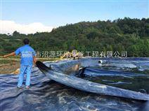 广东黑膜沼气池,沼气工程公司