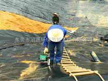 广东湛江沼气工程,广东黑膜沼气池建设