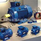 澳大利亚REMX铝壳电机EMS电机厂家