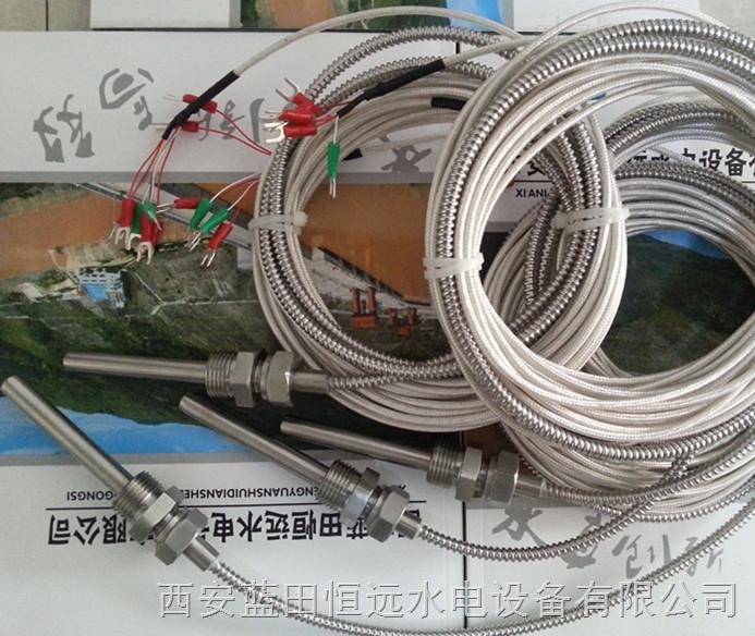 DLSK12PT100-25-5插座式热电阻恒远水电站