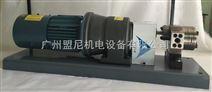 广东东莞薄膜涂层齿轮计量泵