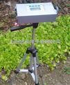 高精负氧离子检测仪COM-3200PROII负离子浓度测量仪