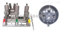 新型带方向BGZ6-12 10KV户外智能重合闸高压真空断路器
