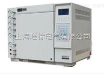 TH-2001气相色谱分析仪