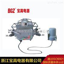 10KV柱上开关智能重合闸高压真空断路器ZW20-12F