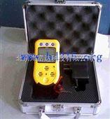 便携式可燃气体检测仪(二氯甲烷等可燃气性气体)