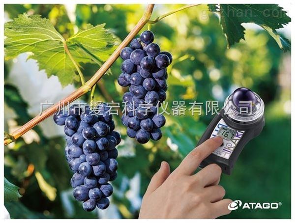 便携式水果无损检测仪