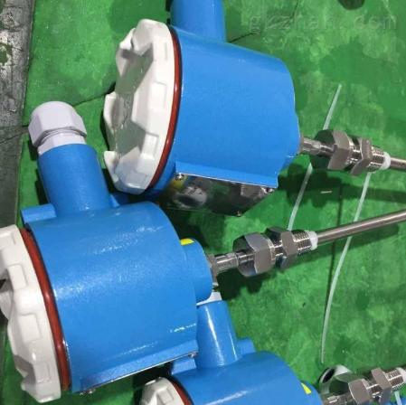 双支WZPK2-145铠装防爆热电阻