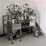DCIJL-2-N多相环路喷射反应装置