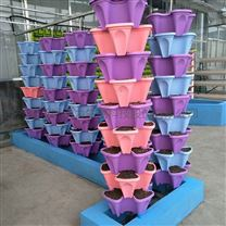 温室无土栽培多彩花瓣式立体水培栽培柱