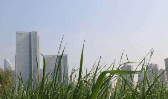 武汉生活垃圾分类:从7月1日起进入生活垃圾强制分类阶段