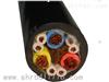 WYHD,SBHP,WYHDP耐寒屏蔽电缆