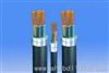 ZRA(C)-VV阻燃型电力电缆